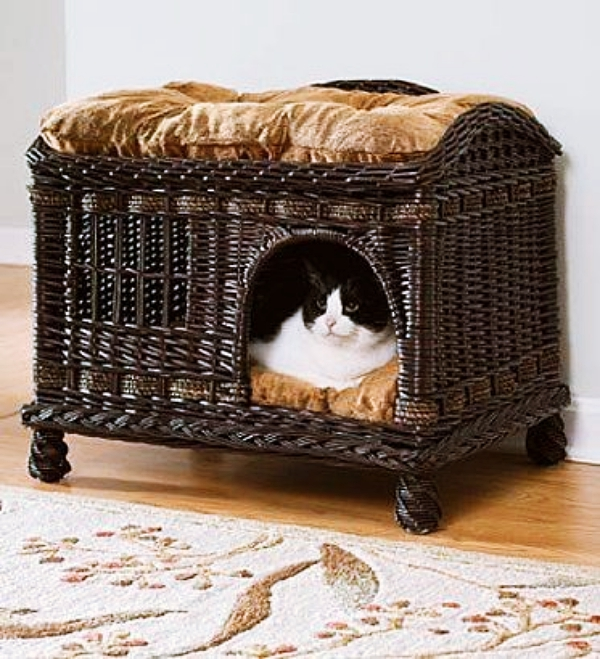 Cool-Cat-Beds-Ideas-for-your-Four-Legged-Buddy