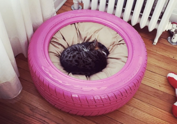 Cool Cat Beds Ideas for your Four-Legged Buddy (8)