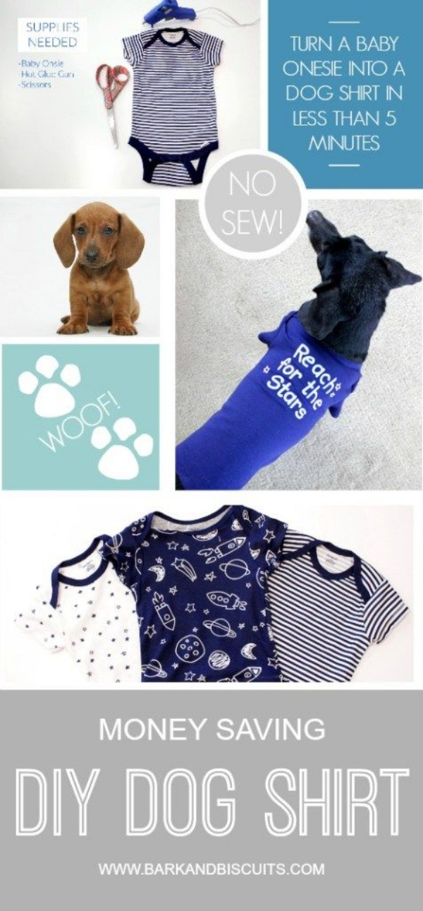 Adorable DIY Dog Stuffs Your Furry Friend will Love