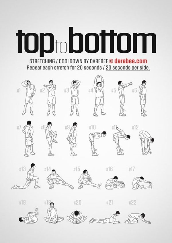 Charts of Post Workout Stretches to Prevent Injuries