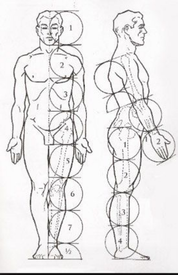 Explained-Human-Figure-Drawings-And-Sketches