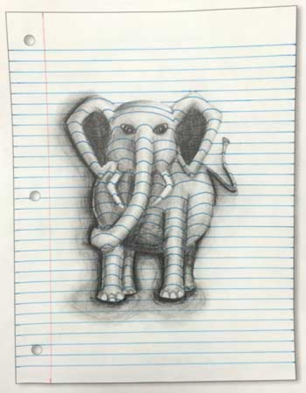 Illusionistic Between the lines Pencil Drawings of Animals